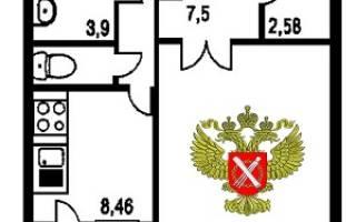 Каков срок для регистрации квартиры в регистрационной палате?