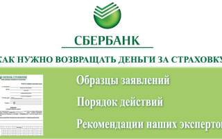 Расторжение договора страхования сбербанк страхование
