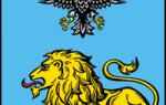 Где поменять права в белгороде