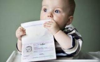 Что грозит собственнику квартиры за выписку новорожденного ребенка?